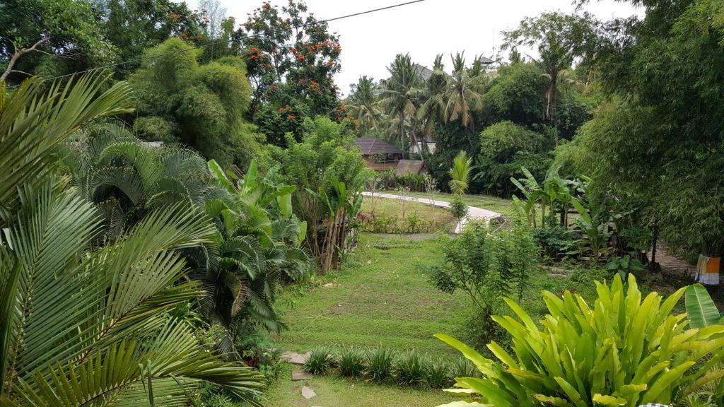 Yoga Barn Ubud   Ubud Bali   Indonesia   Southeast Asia Itinerary