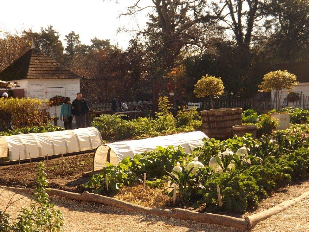 Williamsburg Colonial Garden