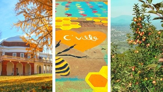 Free Things to Do in Charlottesville