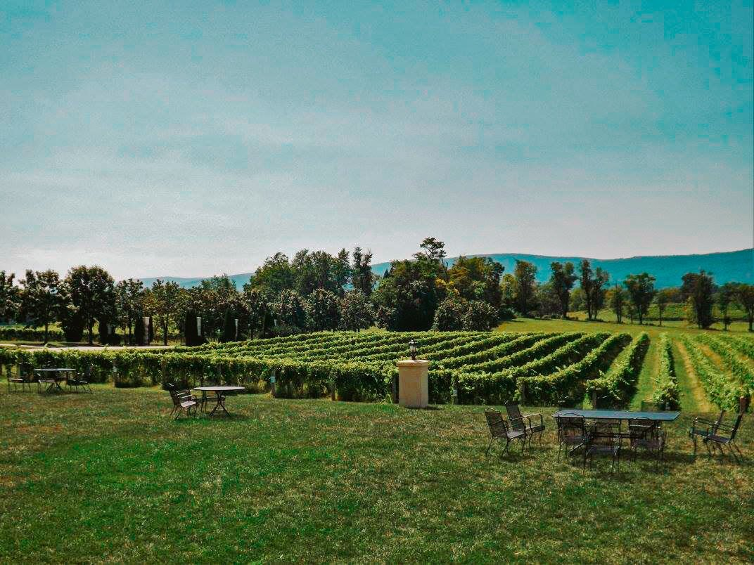 Breaux Vineyards in Loudoun County Virginia | Solo Female Travel in Virginia