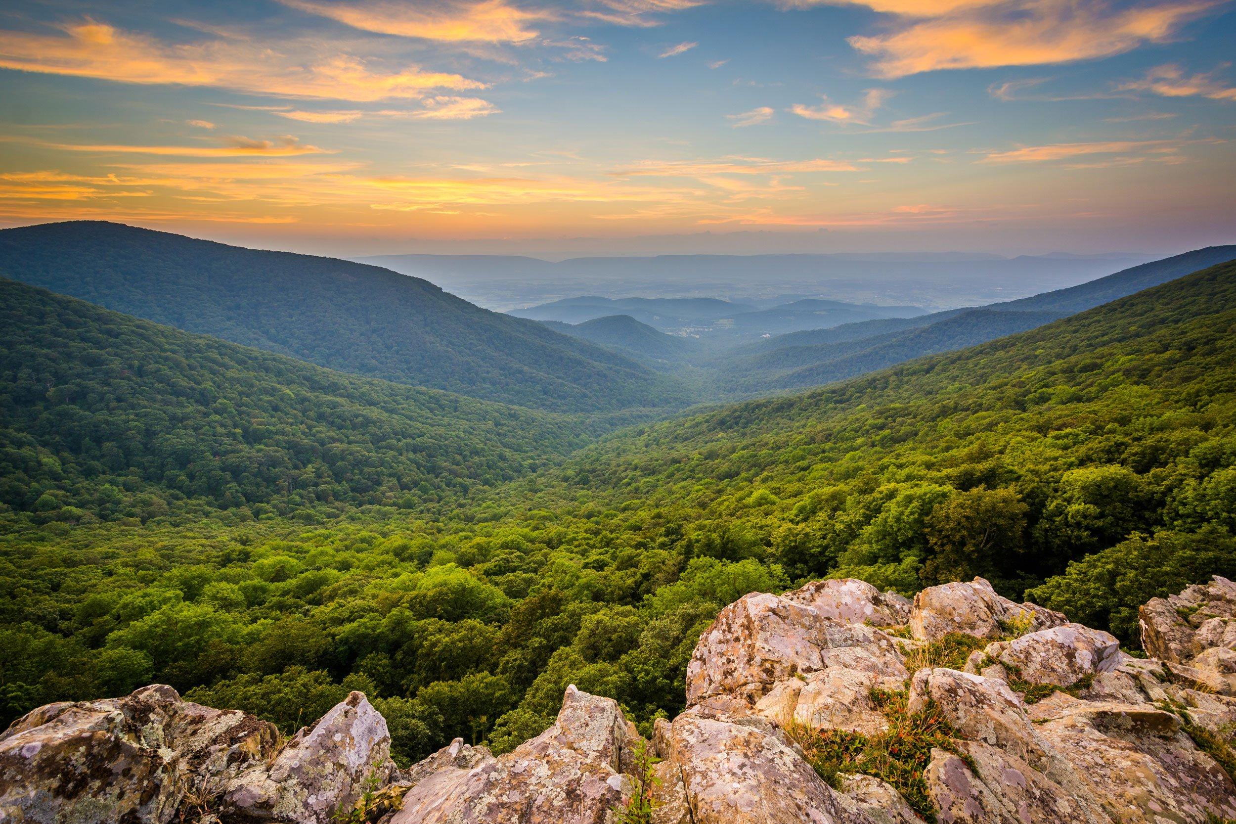 Shenandoah National Park | 2 Week Virginia Road Trip from Washington DC