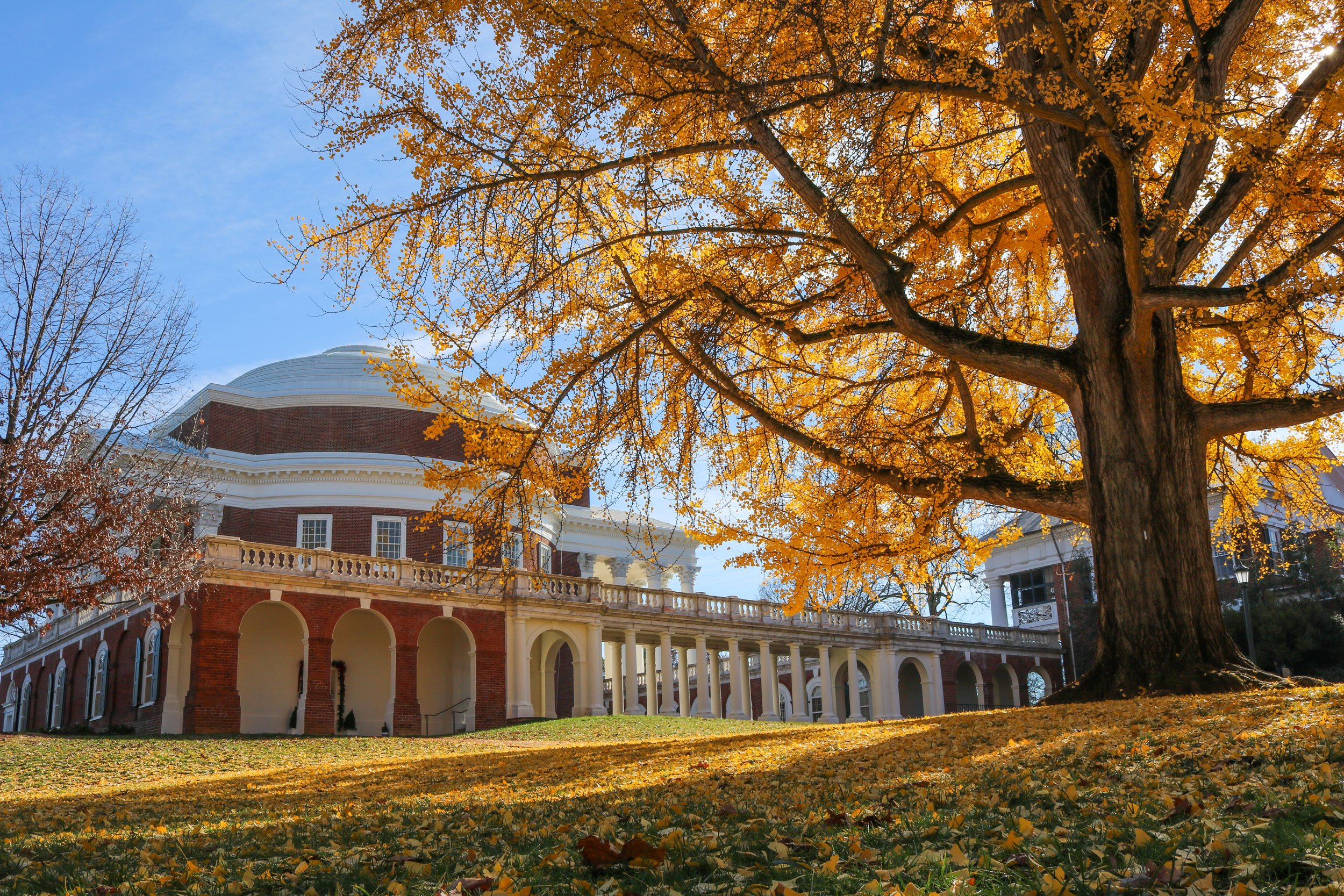 University of Virginia in Charlottesville | Day Trips from Washington DC