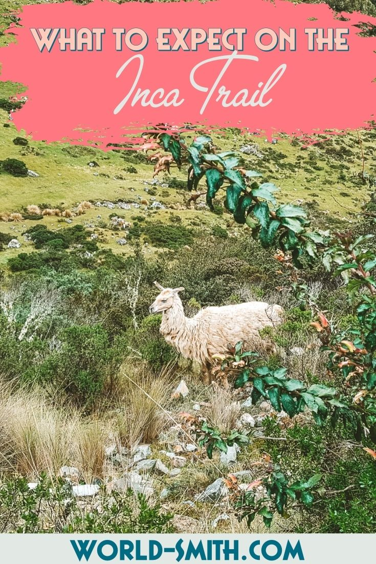 Pin this! What to expect on the Inca Trail
