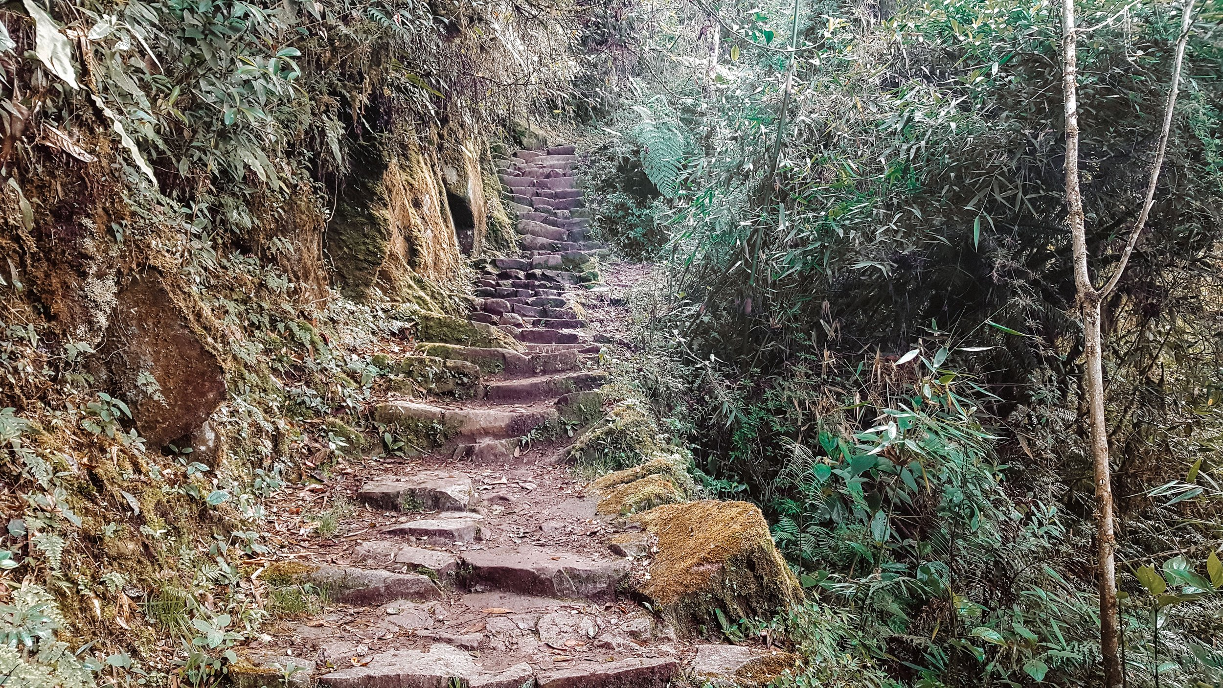 How to Hike the Inca Trail as a Solo Female Traveler