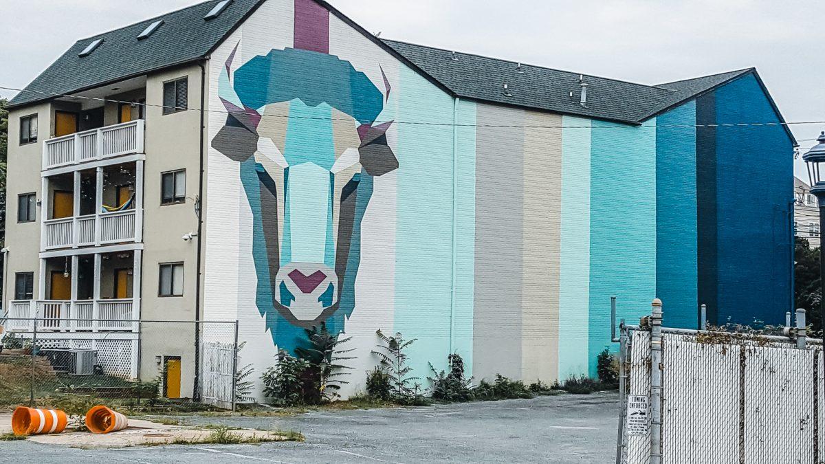 Bison Mural | Charlottesville Mural Mile